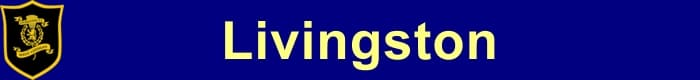 Livingston FC - Football Fan Base - results, fixtures and league tables - create a Soccer Blog here